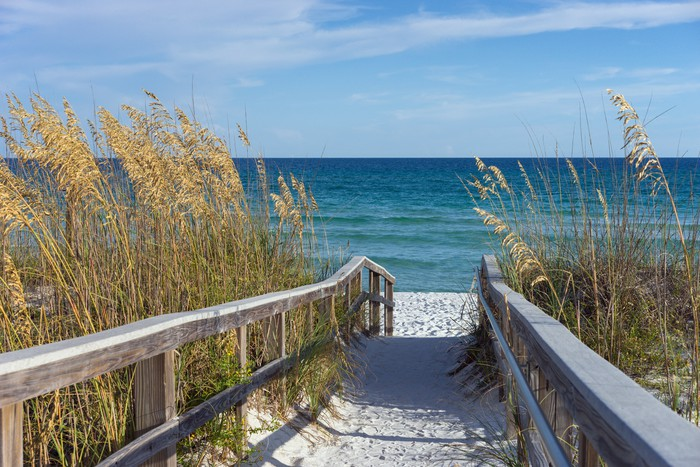 Beach Boardwalk with Dunes and Sea Oats